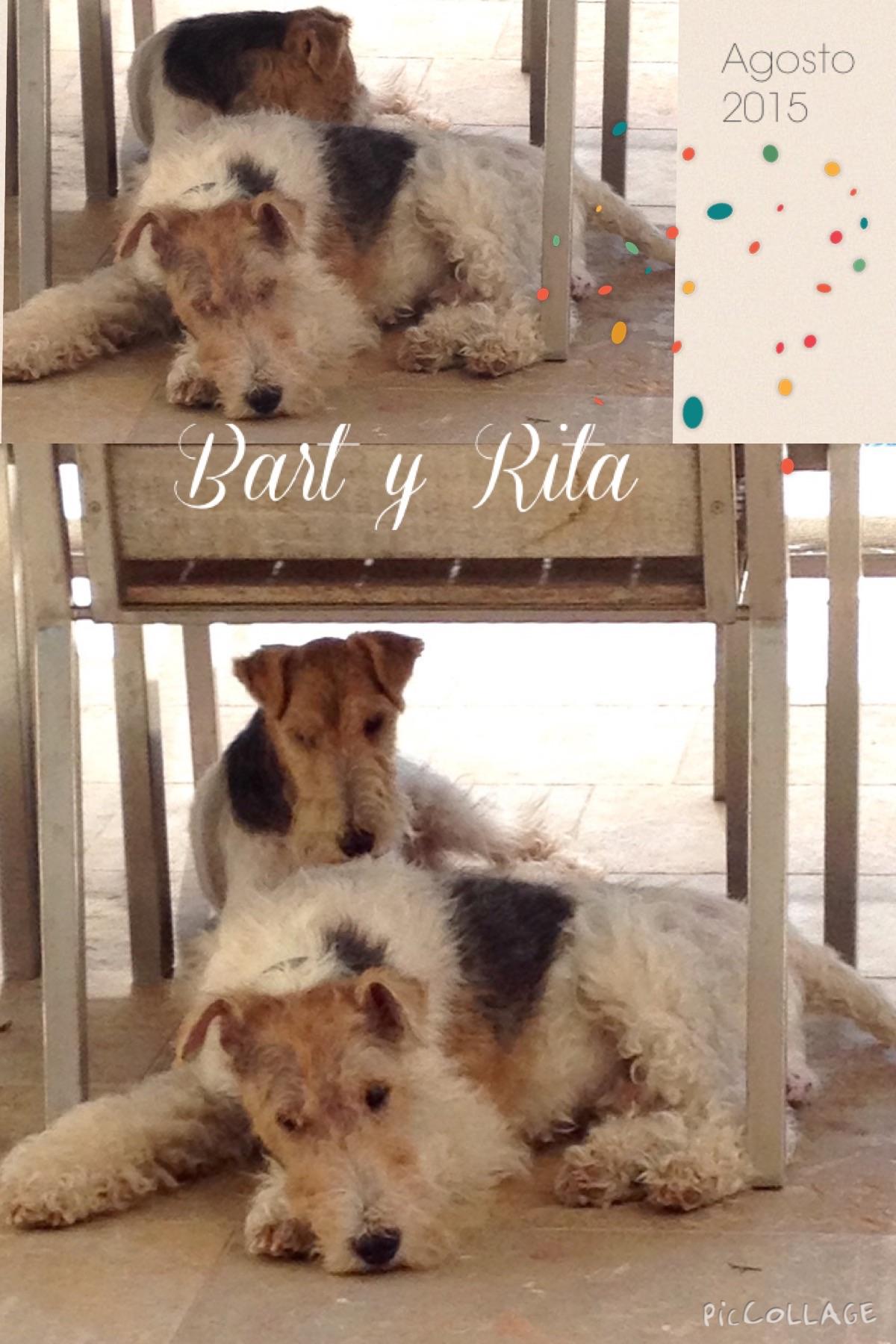 Bart y Rita